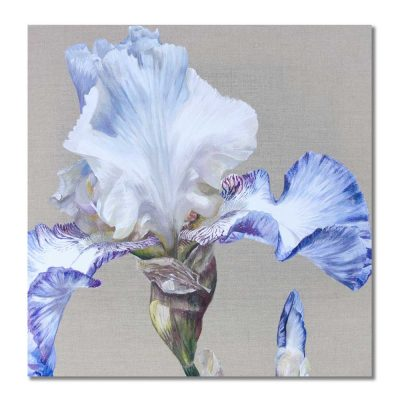china white dancer greetings card by Sarah Caswell