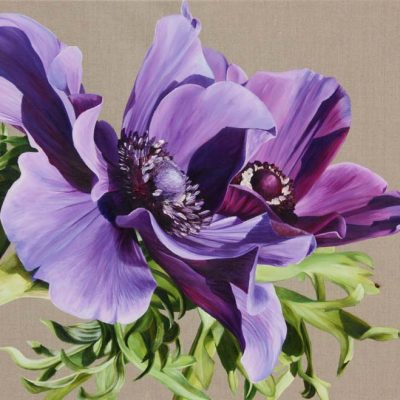 purple anemones on linen background painting by UK floral artist Sarah Caswell