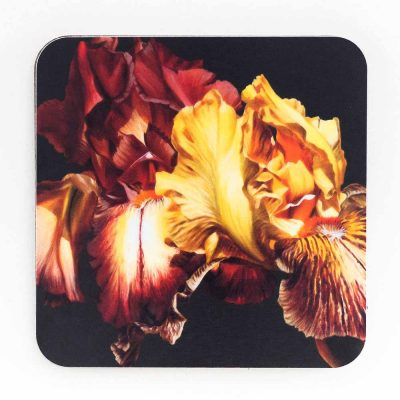 Toffee and gold irises on chocolate background painting by Sarah Caswell melamine coaster