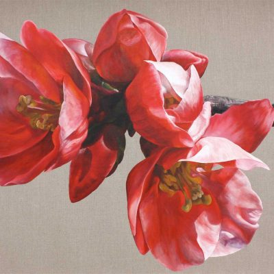 Red japonica chaenomeles on linen background painting by UK floral artist Sarah Caswell