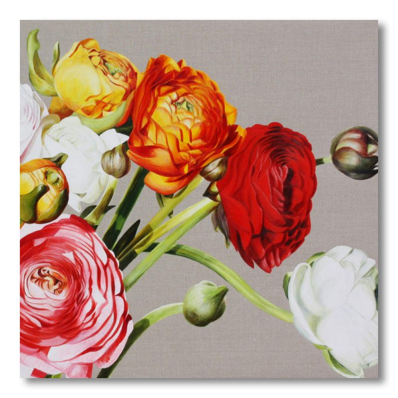 Multi-coloured ranunculus on linen painting by Sarah Caswell