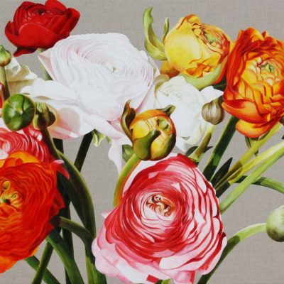 Multi-coloured ranunculus on linen background painting by UK floral artist Sarah Caswell