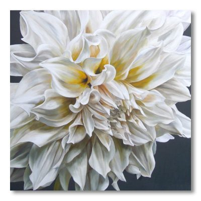 Creamy white dahlia cafe au lait on a black background painting by Sarah Caswell