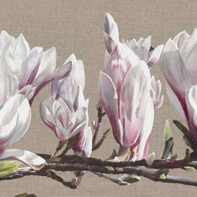 White and pink magnolia blossom on a branch on a linen background painting by UK floral artist Sarah Caswell