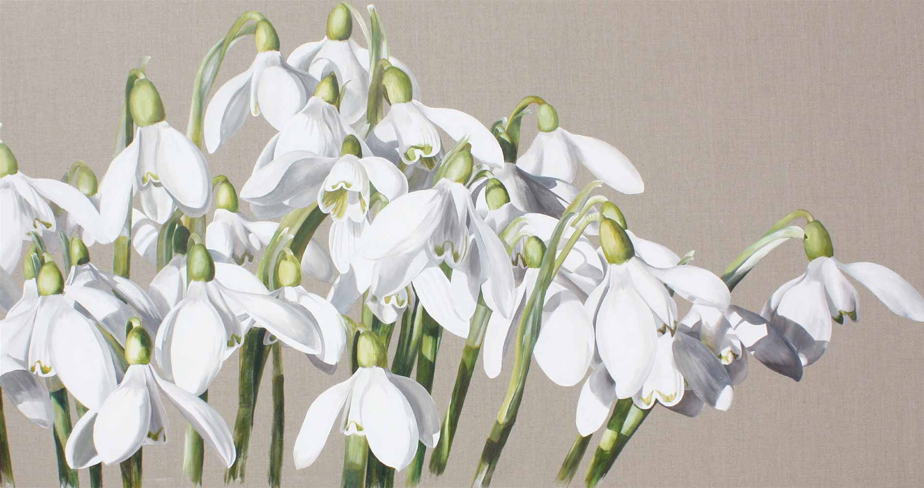 White snowdrops galanthus on linen background painting by UK floral artist Sarah Caswell