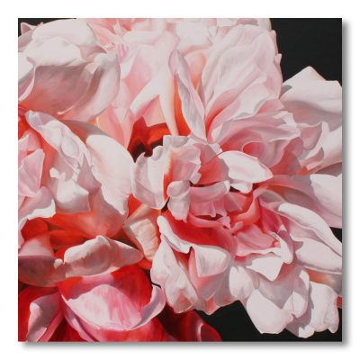 Albertine pink roses painting by Sarah Caswell