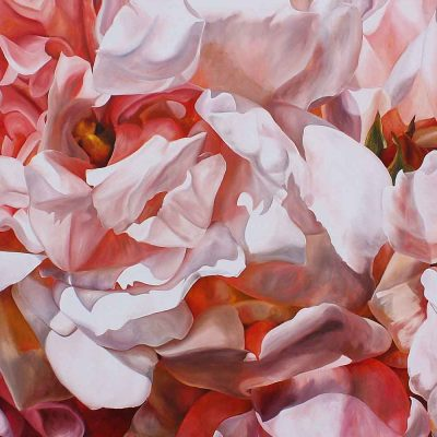 Pink Albertine roses on black background painting by UK floral artist Sarah Caswell