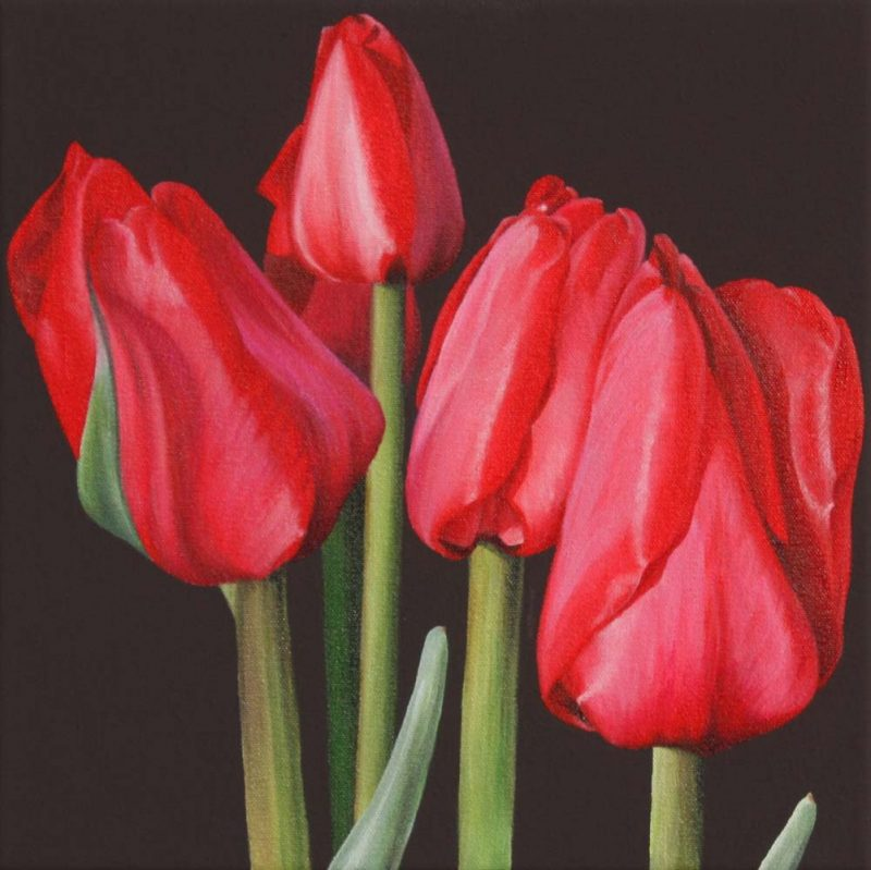 Red tulips on chocolate background painting by UK floral artist Sarah Caswell