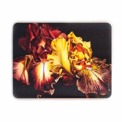 Gold and toffee irises on chocolate painting by Sarah Caswell melamine tablemat