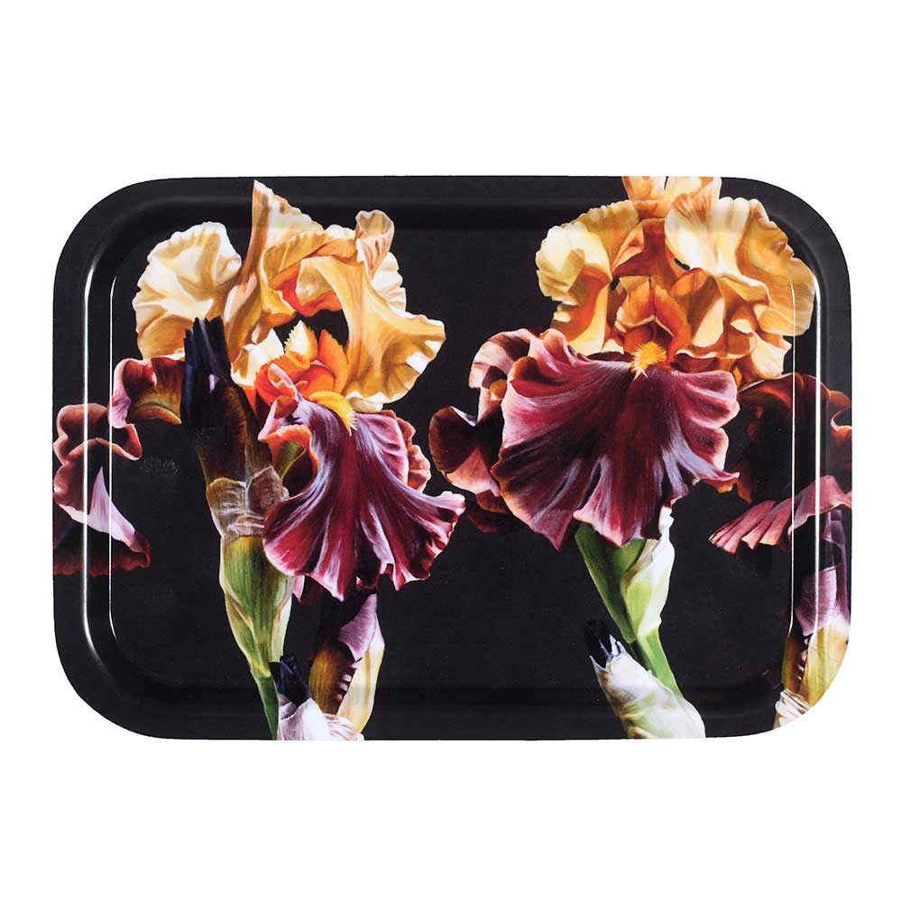 Toffee and gold iris on deep brown background painting by Sarah Caswell birchwood tray
