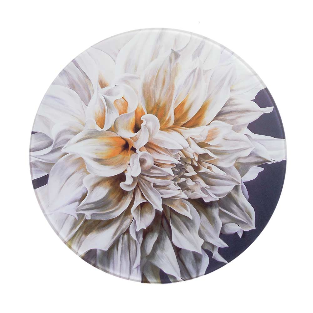 Creamy white Cafe au Lait dahlia painting by Sarah Caswell round glass worktop saver or coaster