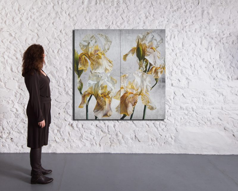 Canvas Print of Original acrylic painting by Sarah Caswell Iris in Argent II. In a gallery setting.