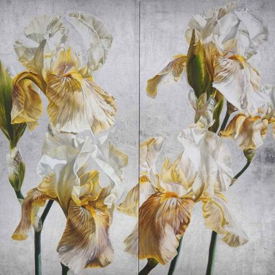 Canvas Print of Original acrylic painting by Sarah Caswell Iris in Argent II. I