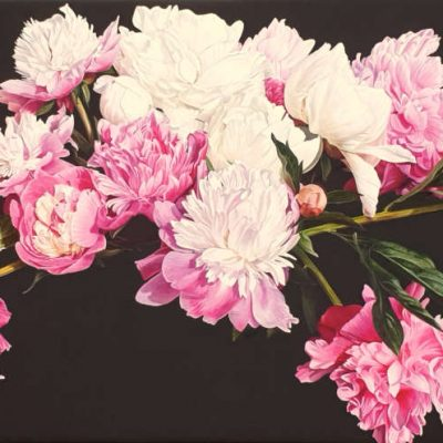 Canvas print of original acrylic painting by floral artist Sarah Caswell. Pink and white peonies in bright sunshine on dark brown background