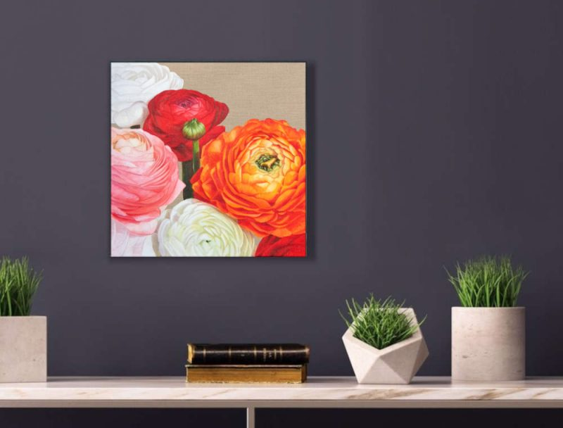 Multi-coloured Ranunculus (Persian Buttercups) in bright sunshine. Original acrylic painting on clear primed linen canvas. Displayed on a purple interior wall.