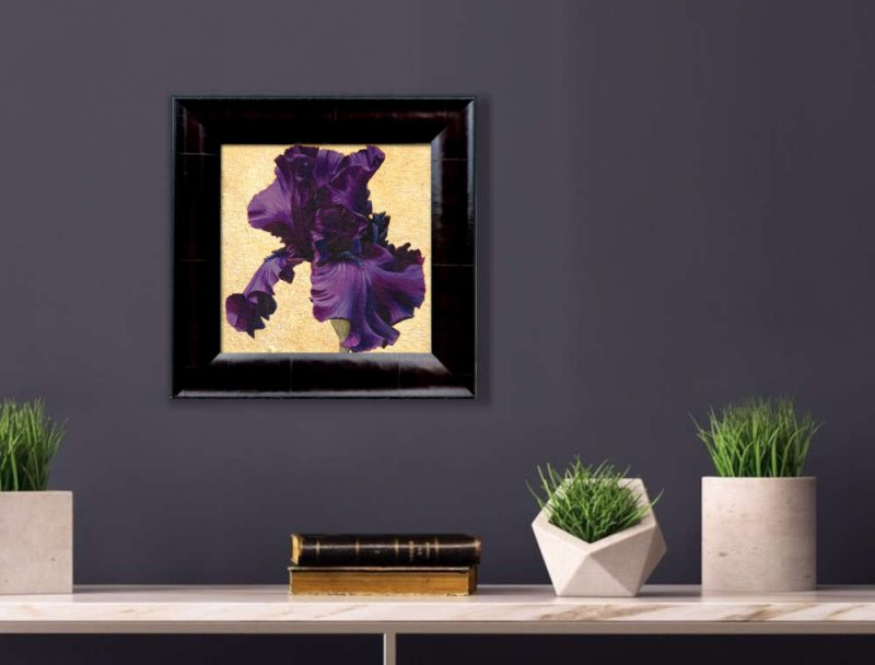 Deep purple bearded iris in bright sunshine on 22.5ct moon gold leaf background. Original acrylic painting by UK Floral Artist Sarah Caswell on canvas. Displayed on a purple interior wall.